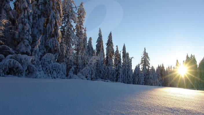 Winterurlaub In Der Region Bayerischer Wald Orte Unterkunft